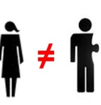 DIFERÈNCIES ENTRE MATRIMONI I PARELLES DE FET